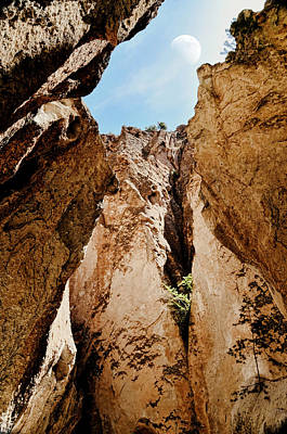 Jemez Mountains Photograph - How High by Diana Angstadt