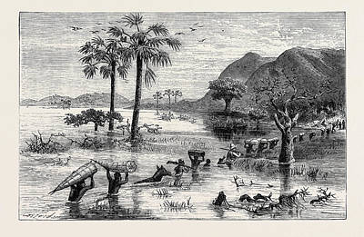 Found Art Drawing - How I Found Livingstone Discomforts Of African Travel by English School