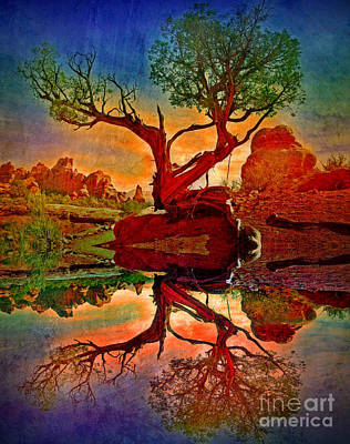 Photograph - How One Tree Becomes Two by Tara Turner