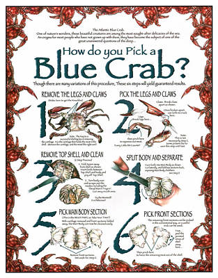 Blue Crab Drawing - How To Pick A Blue Crab by Jonathan W Brown
