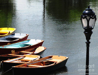 Photograph - Hoyt Lakes Rowboats In Delaware Park Buffalo Ny Oil Painting Effect by Rose Santuci-Sofranko