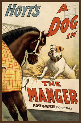 Advertisements Drawing - Hoyts A Dog In The Manger by Aged Pixel