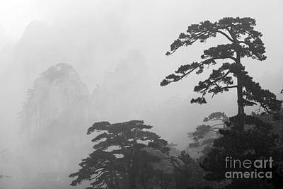 Mountains Photograph - Huangshan Mountains And Trees In The Fog China by Matteo Colombo