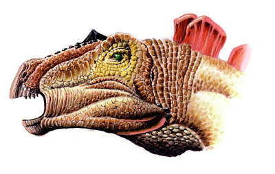 Huayangosaurus Dinosaur Print by Deagostini/uig