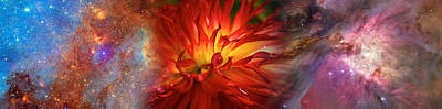 Fantasy Flowers Photograph - Hubble Galaxy With Red Chrysanthemums by Panoramic Images