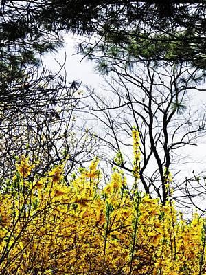 Photograph - Hudson River Spring 2 by Sarah Loft