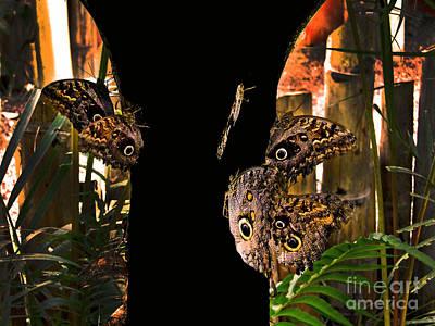 Huge Butterflies In Mindo Art Print by Al Bourassa
