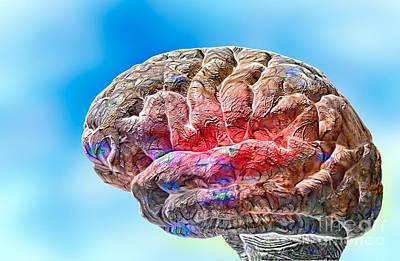 Processor Photograph - Human Brain by Mike Agliolo