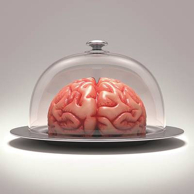 Human Brain On Platter Art Print by Ktsdesign