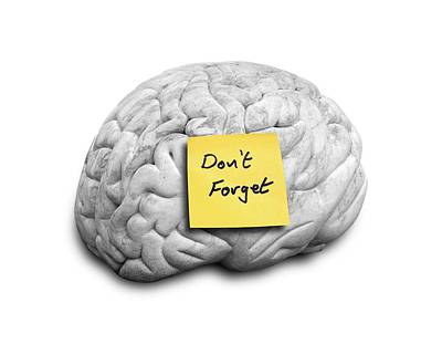 Human Brain With An Adhesive Note Art Print by Victor De Schwanberg