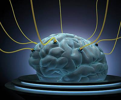 Human Brain Photograph - Human Brain With Sensors by Ktsdesign