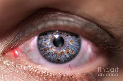 Human Eye Art Print by Guy Viner