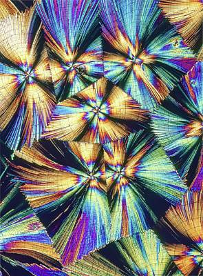 Human Growth Hormone Crystals Print by Alfred Pasieka