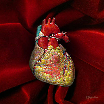 Autopsy Digital Art - Human Heart On Red Velvet by Serge Averbukh