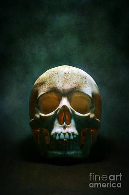 Deaths Head Photograph - Human Skull by Carlos Caetano