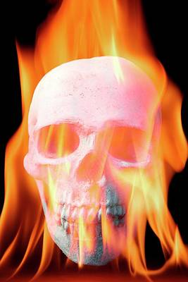 Human Skull In Flames Art Print