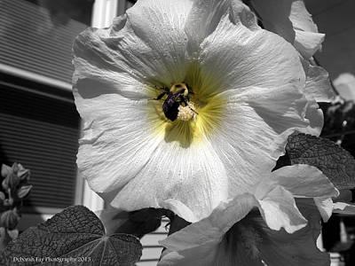 Art Print featuring the photograph Humble Bumblebee by Deborah Fay