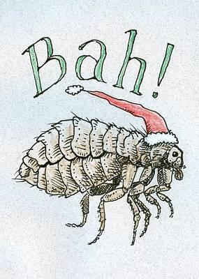 Drawing - Humbug Christmas by Ralf Schulze
