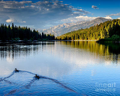 Photograph - Hume Lake Evening by Terry Garvin