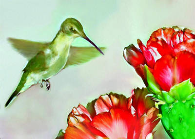 Painting - Humming Bird And Cactus Flowers by Bob and Nadine Johnston
