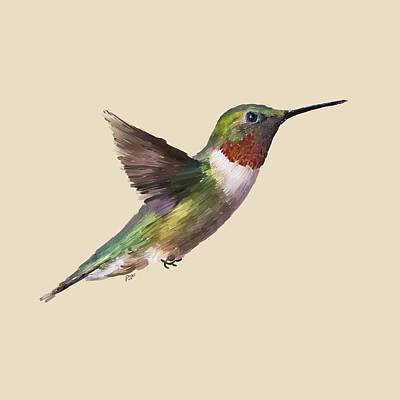 Pollinate Digital Art - Humming Bird by Paul Freidlund