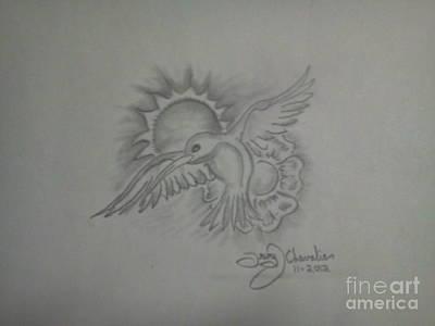 Humming Bird Original