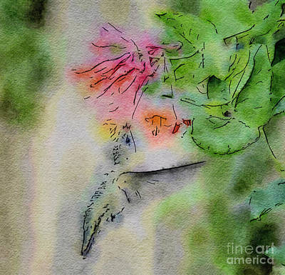 Painting - Hummingbird - All In by Kerri Farley