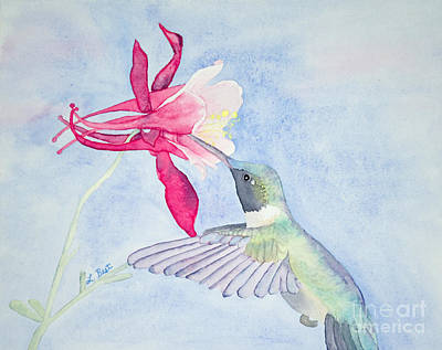 Painting - Hummingbird And Columbine by Laurel Best