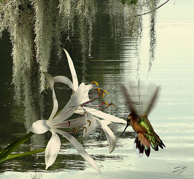Digital Art - Hummingbird And Swamp Lily by IM Spadecaller