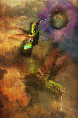 Photograph - Hummingbird In Flight by Bob Coates