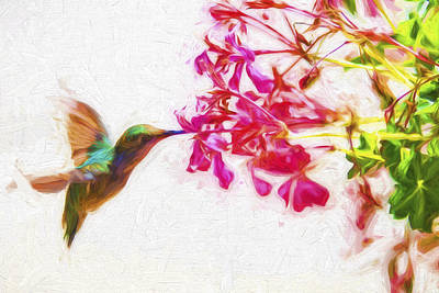 Photograph - Hummingbird In Flight Digitally Painted by David Haskett