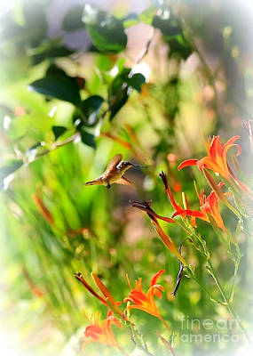 Comic Character Paintings - Hummingbird in the Daylilies by Carol Groenen