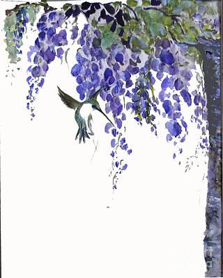 Hummingbird In Wisteria  Art Print by Sibby S