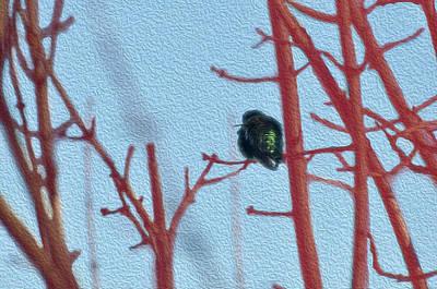 Digital Art - Hummingbird Keeping Watch by Teri Schuster