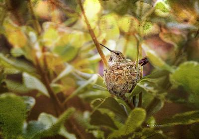Hummingbird Mom In Nest Art Print by Angela A Stanton
