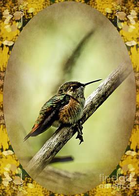 Photograph - Hummingbird Noveau by Belinda Greb