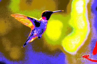 Photograph - Hummingbird by Randy J Heath