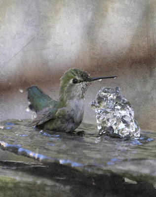 Hummingbird Spa Art Print by Angie Vogel