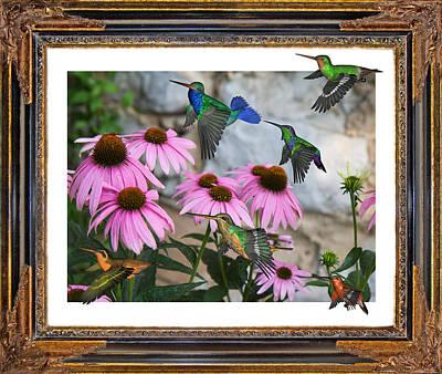 Hummingbirds Art Print by Betsy Knapp