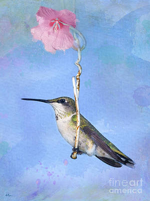 Rose Of Sharon Photograph - Hummingbirds Like To Swing by Betty LaRue