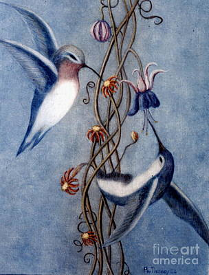 Painting - Hummingbirds by Patricia  Tierney