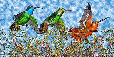 Avian Digital Art - Hummingbirds Two Of Two by Betsy Knapp