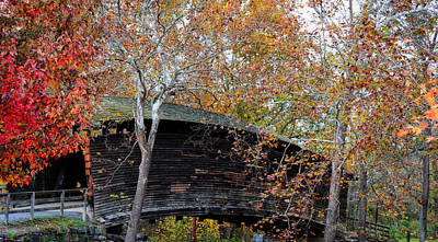 Photograph - Humpback Bridge In The Fall by Cathy Shiflett