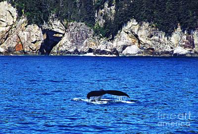 Humpback Whale Alaska Art Print by Thomas R Fletcher