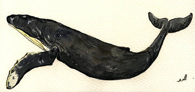 Whale Drawing - Humpback Whale by Juan  Bosco