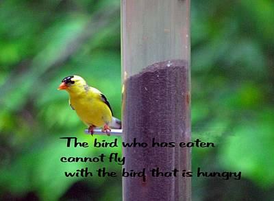 Photograph - Hungry Bird by Gary Wonning