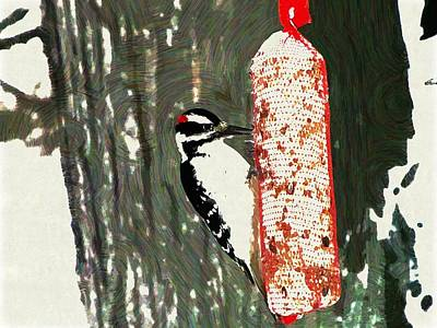 Woodpecker Mixed Media - Hungry  by Robert  Nacke