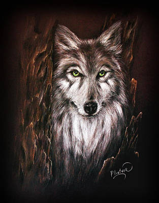 Art Print featuring the drawing Hunter In The Night by Patricia Lintner
