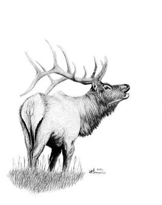 Elk Drawing - Hunters Target by Kayleigh Semeniuk