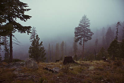 Photograph - Hunting In The Clearwater Mountains Idah0 by Ron Roberts